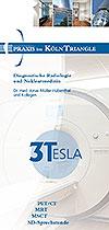 3TESLA Flyer für Überweiser zum Download